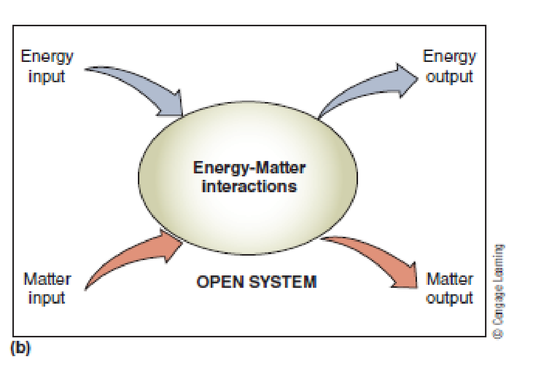 Chapter 1, Problem 16FQ, Think of an example of an open system, and outline some of the matterenergy inputs and outputs