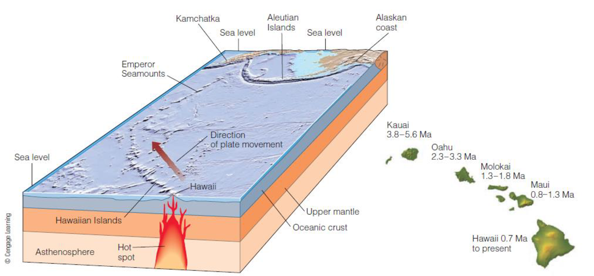 Chapter 10, Problem 32FQ, FIGURE 10.32 Over the last few million years, a stationary zone of molten material in the mantlea