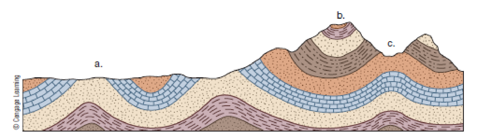 Chapter 11, Problem 13FQ, Why dont all anticlines form hills or mountains?