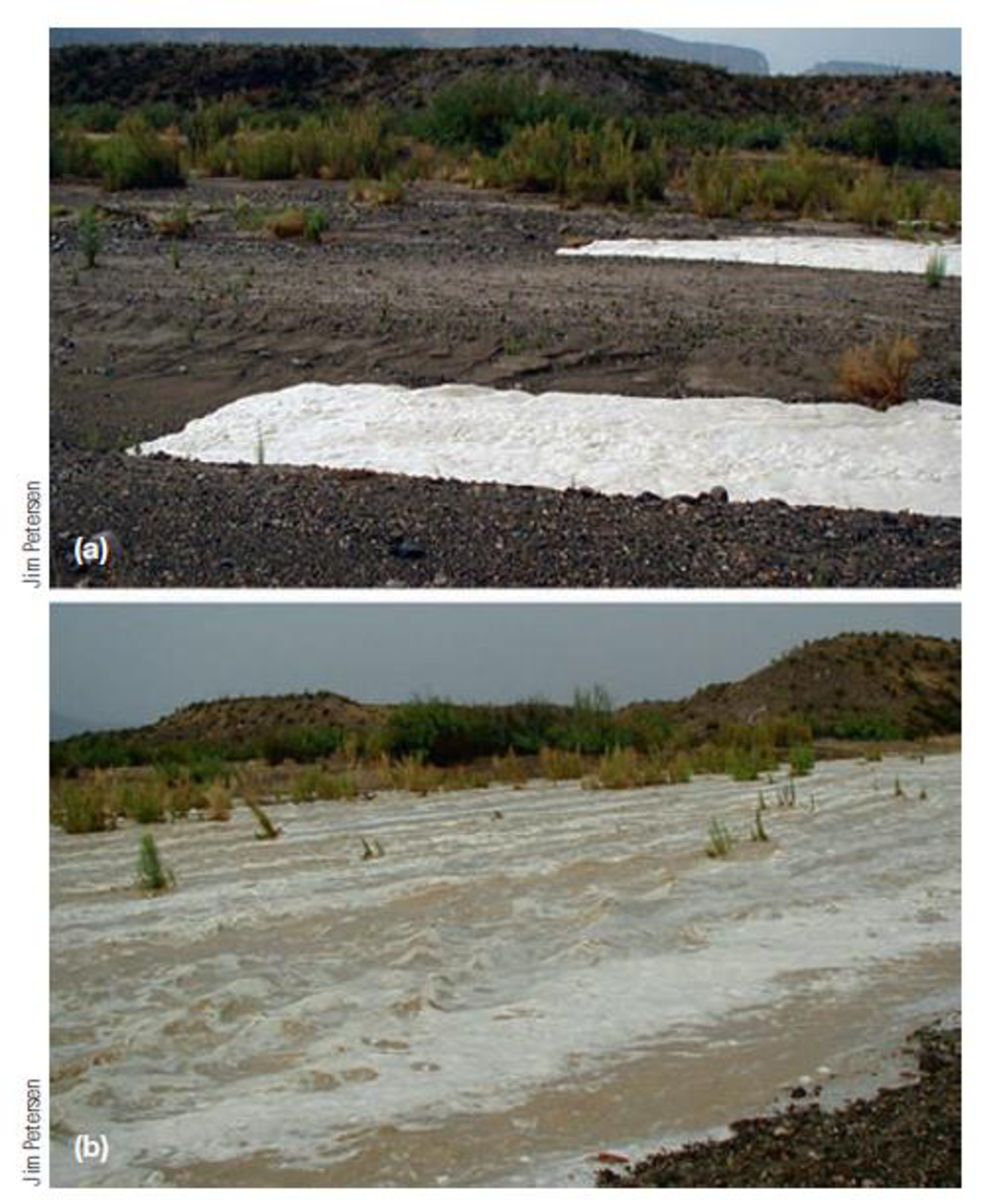 Chapter 7, Problem 19FQ, FIGURE 7.19 Intense rainfall in arid regions can cause flash floods like this one in the Chihuahuan