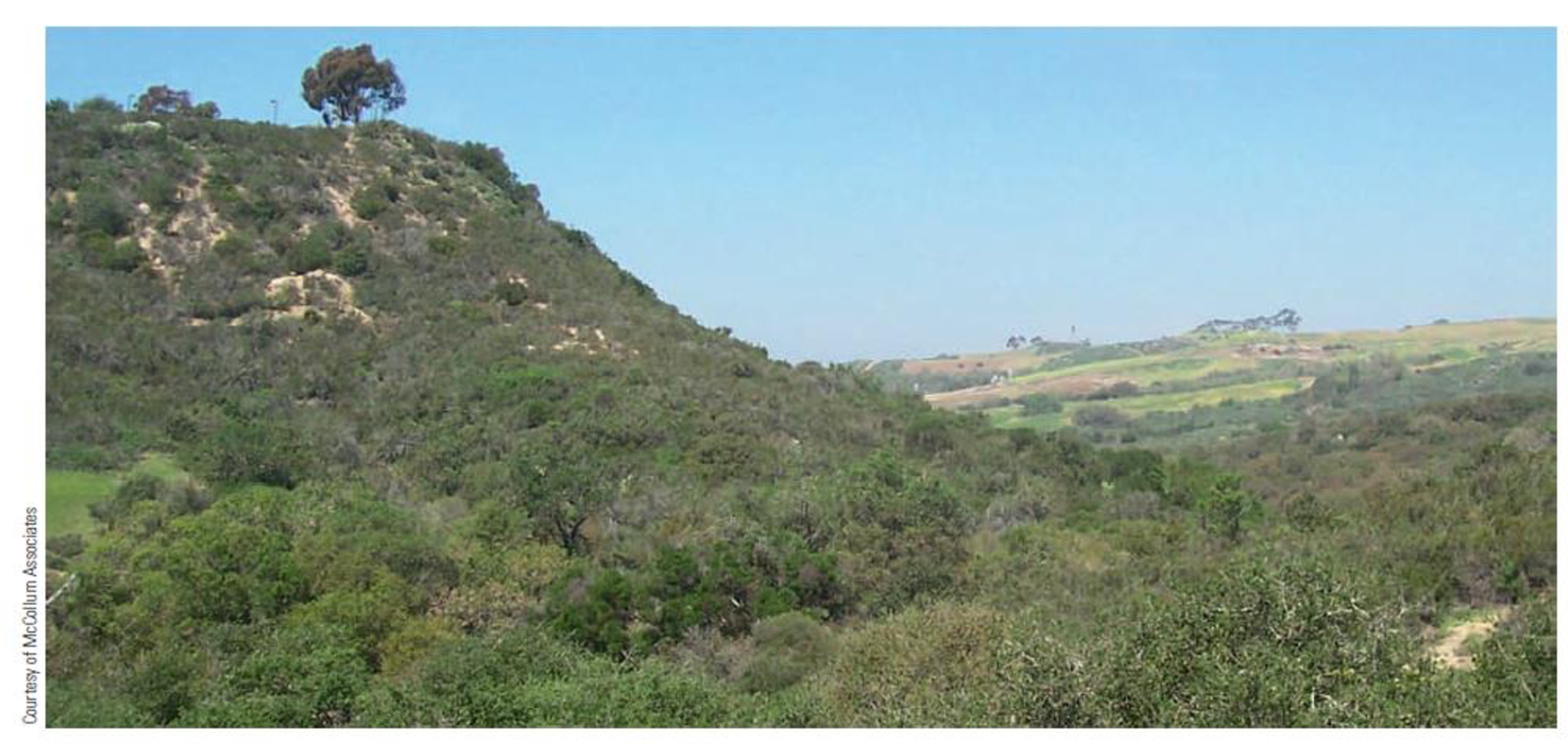 Chapter 7, Problem 24FQ, FIGURE 7.24 Typical chaparral vegetation forms a dense cover of shrubs and low trees near San Diego,
