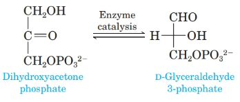 Chapter 20, Problem 20.82P, 2 One step in glycolysis, the pathway that converts glucose to pyruvate (Section 28-2), involves an