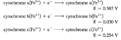 Chapter 17, Problem 128AE, The ultimate electron acceptor in the respiration process is molecular oxygen. Electron transfer