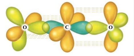 Chapter 19, Problem 35E, The following illustration shows the orbitals used to form the bonds in carbon dioxide. Each color