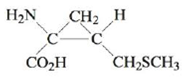 Chapter 21, Problem 146CP, In 1994 chemists at Texas A  M University reported the synthesis of a non-naturally occurring amino , example  1