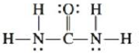 Chapter 4, Problem 54E, Urea, a compound formed in the liver, is one of the ways humans excrete nitrogen. The Lewis