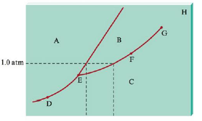 Chapter 9, Problem 103E, Consider the phase diagram given below. What phases are present at points A through H? Identify the