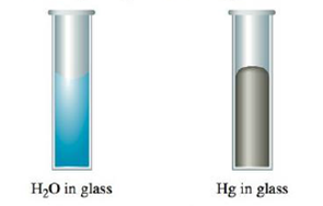 Chapter 9, Problem 43E, The shape of the meniscus of water in a glass tube is different from that of mercury in a glass