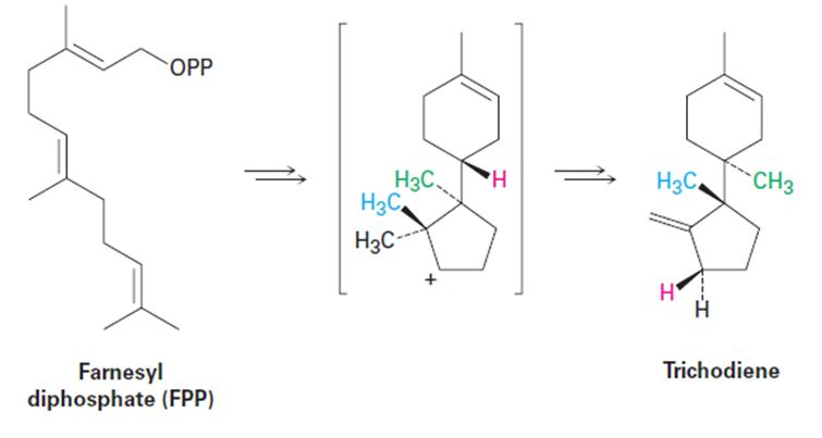 Chapter 27.SE, Problem 50AP, Propose a mechanism for the biosynthesis of the sesquiterpenoid trichodiene from farnesyl