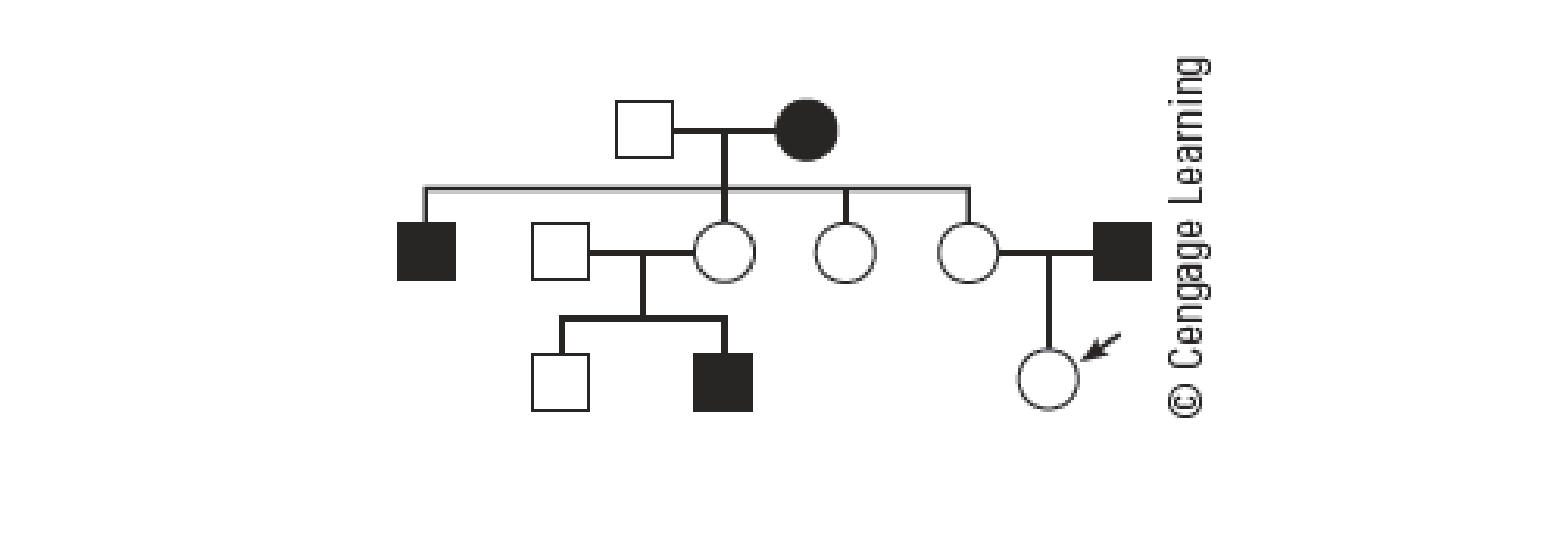 The Following Pedigree Shows The Pattern Of Inheritance Of Red Green Color Blindness In A Family Females Are Shown As Circles And Males As Squares The Squares Or Circles Of Individuals Affected By