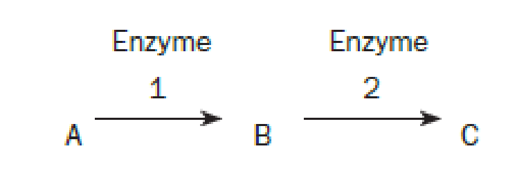 Chapter 10, Problem 5QP, Questions 4 through 6 refer to the following hypothetical pathway in which substance A is converted