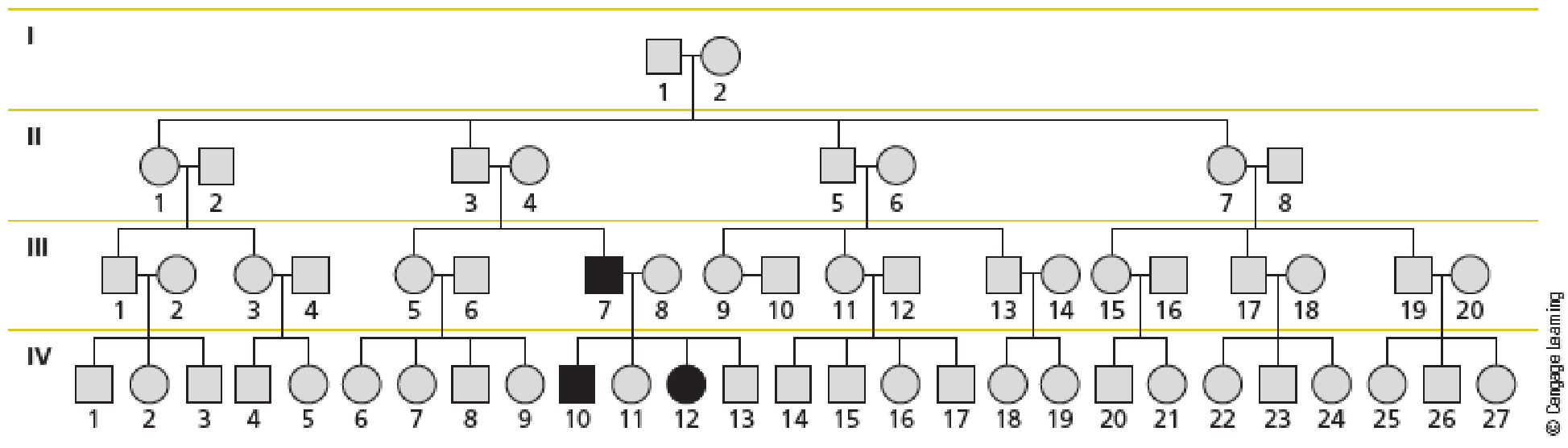 Chapter 11, Problem 16QP, Familial retinoblastoma, a rare autosomal dominant defect, arose in a large family that had no prior