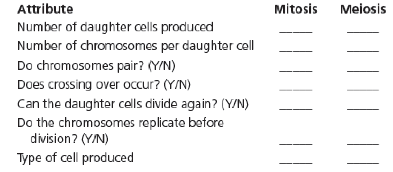 Chapter 2, Problem 19QP, List the differences between mitosis and meiosis in the following chart: