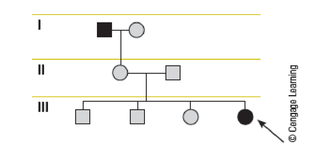 Chapter 4, Problem 3QP, Pedigree Analysis Is a Basic Method in Human Genetics Using the pedigree provided, answer the