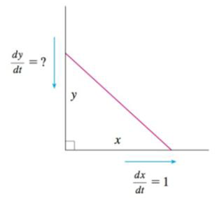 Chapter 3.9, Problem 34E, According to the model we used to solve Example 2, what happens as the top of the ladder approaches , example  3