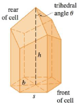 Chapter 4.7, Problem 47E, In a beehive, each cell is a regular hexagonal prism, open at one end with a trihedral angle at the