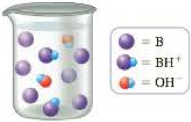 Chapter 16.3, Problem 16.2CC, A base B is placed into a beaker of water with the result depicted below (water molecules have been