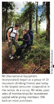 Chapter 5.II, Problem 16TIE, REI (Recreational Equipment Incorporated) sells a 35 -liter backpack for $110 and an 18-liter