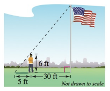 Chapter 8, Problem 22RE, Height A person 6 feet tall walks away from a flagpole toward the tip of the shadow of the flagpole.