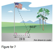 Chapter 8, Problem 7TYS, At a distance of 19 feet from the base, the angle of elevation to the top of a flagpole is 64.6 (see