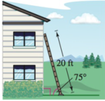 Chapter 8.2, Problem 71E, Length A 20-foot ladder leaning against the side of a house makes a 75 angle with the ground (see