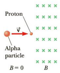 Chapter 19, Problem 19P, A proton is at rest at the plane vertical boundary of a region containing a uniform vertical