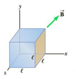 Chapter 20, Problem 7P, A cube of edge length  = 2.5 cm is positioned as shown in Figure P20.7. There is a uniform magnetic