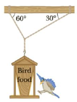 Chapter 4, Problem 39P, A 150-N bird feeder is supported by three cables as shown in Figure P4.39. Find the tension in each
