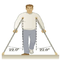 Chapter 4, Problem 49P, The person in Figure P4.49 weighs 170. lb. Each crutch makes an angle of 22.0 with the vertical (as