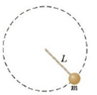 Chapter 7, Problem 70AP, A 0.275-kg object is swung in a vertical circular path on a string 0.850 m long as in Figure P7.70.