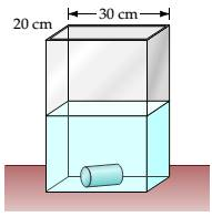 Chapter 7.5, Problem 1EE, A cylinder with a 2-cm radius and a height of 10 cm is submerged in a tank of water that is 20 cm