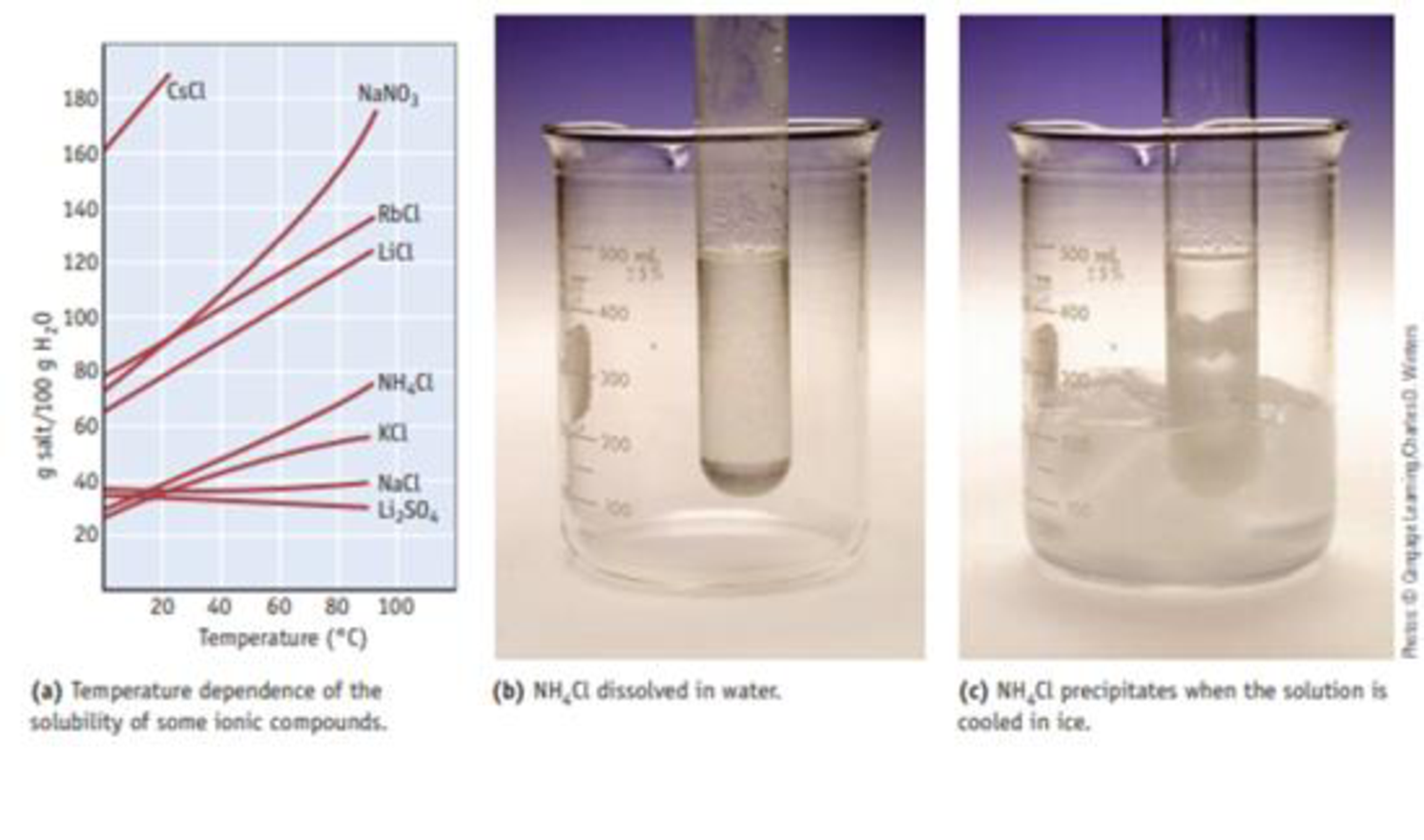 Chapter 13, Problem 17PS, You make a saturated solution of NaCl at 25 C. No solid is present in the beaker holding the