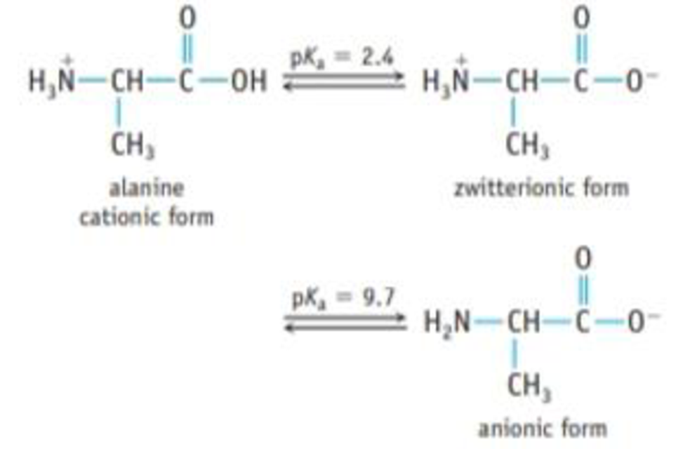 Chapter 16, Problem 116IL, Amino acids are an important group of compounds. At low pH, both the carboxylic acid group (CO2H)