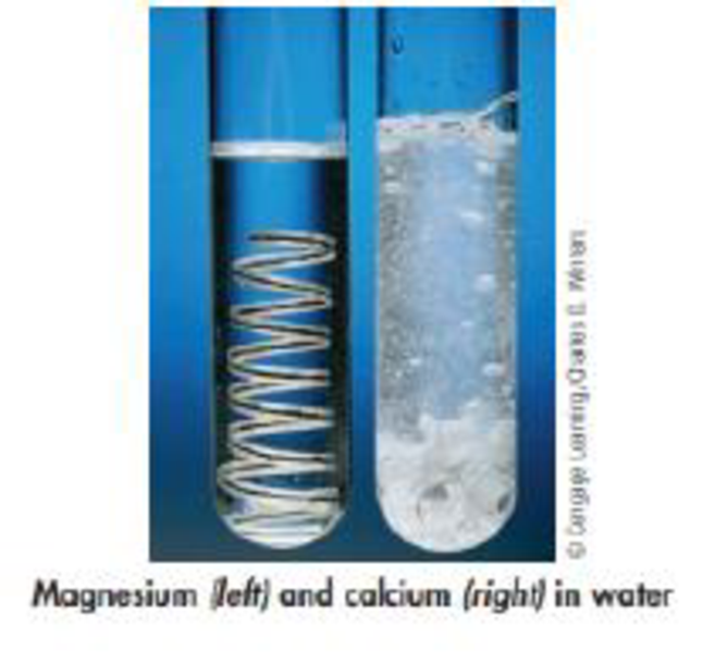 Chapter 2, Problem 165SCQ, The photo here depicts what happens when a coil of magnesium ribbon and a few calcium chips are
