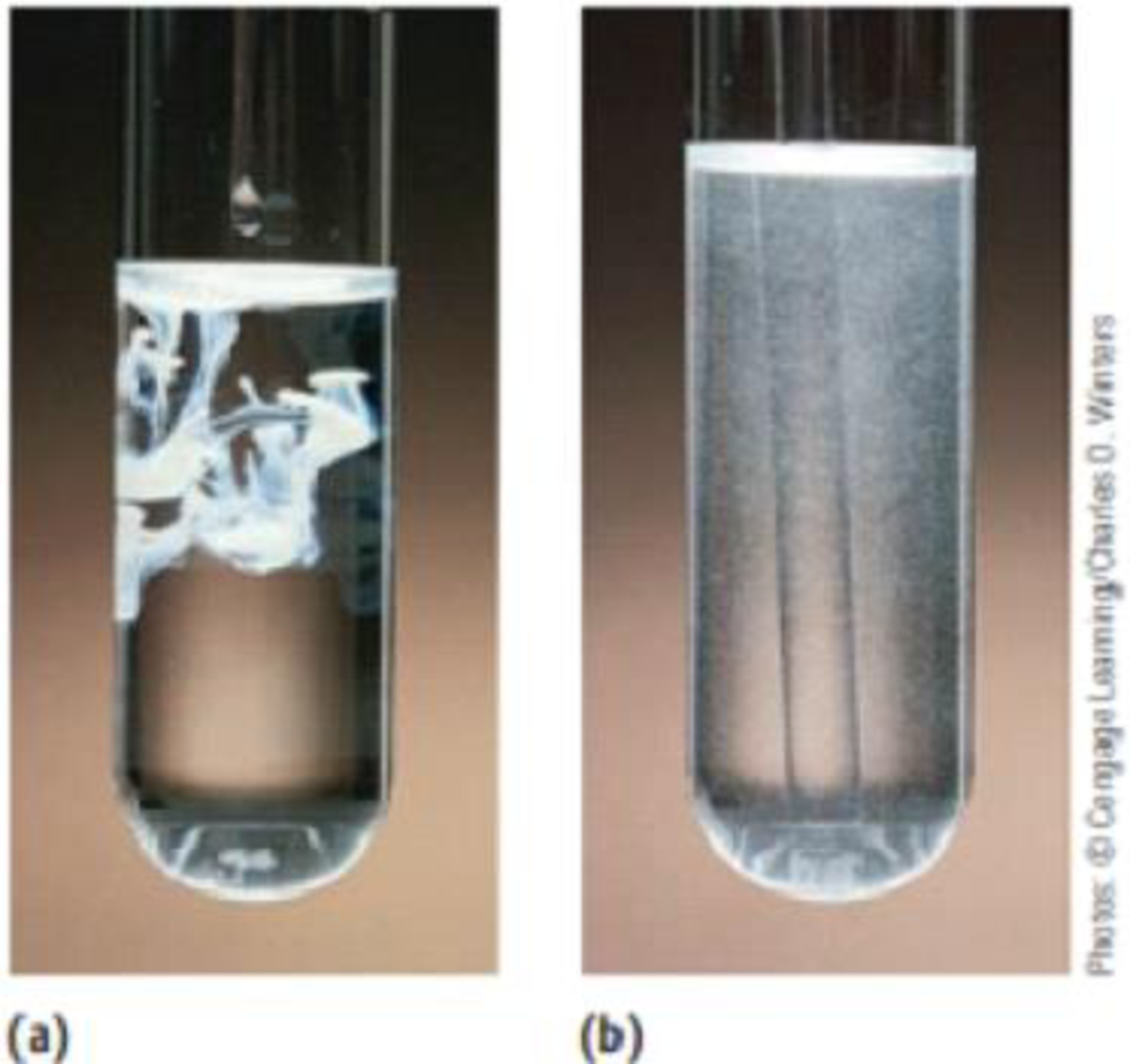 Chapter 4, Problem 65PS, In the photographic developing process, silver bromide is dissolved by adding sodium thiosulfate.