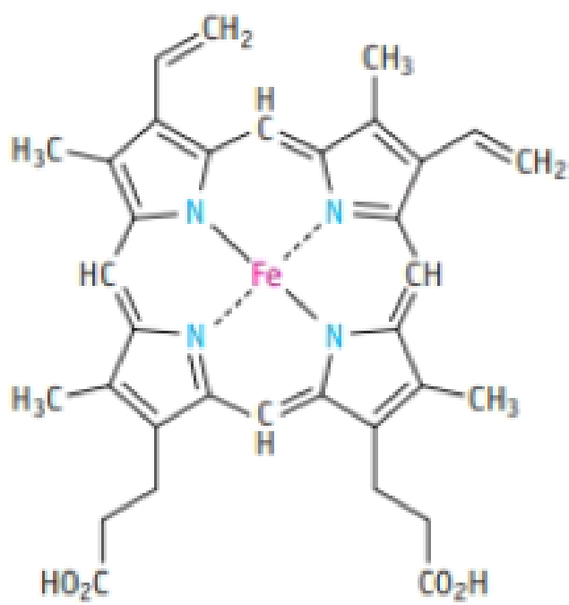 Chapter 7.6, Problem 4Q, In hemoglobin, the iron is enclosed by the porphyrin group (shown below), a flat grouping of carbon,