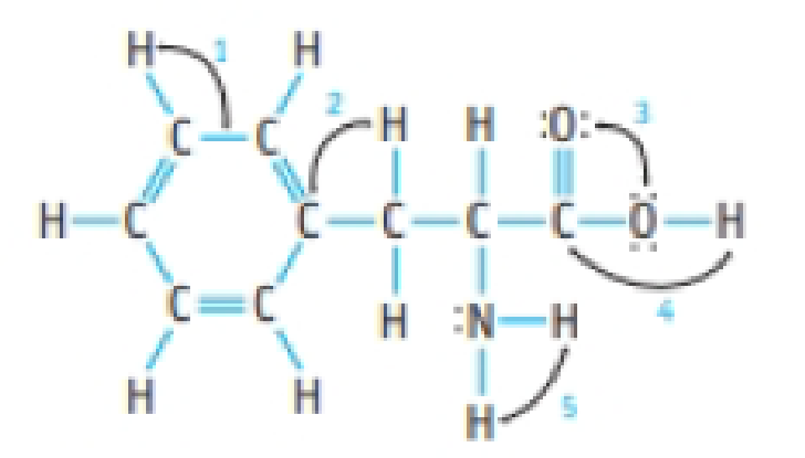 Chapter 8, Problem 25PS, Phenylalanine is one of the natural amino acids and is a breakdown product of the artificial
