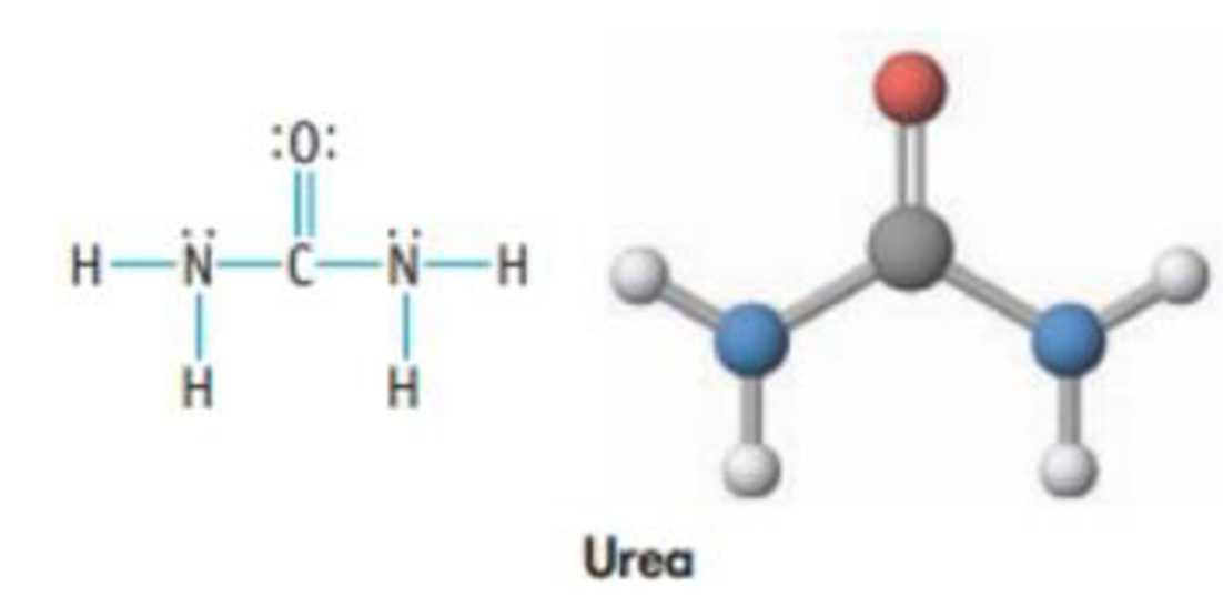 Chapter 8, Problem 30PS, Urea, (NH2)2CO, is used in plastics and fertilizers. It is also the primary nitrogen-containing