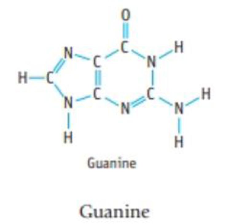 Chapter 8, Problem 93IL, Guanine is present in both DNA and RNA. (a) What is the most polar bond in the molecule? (b) What is