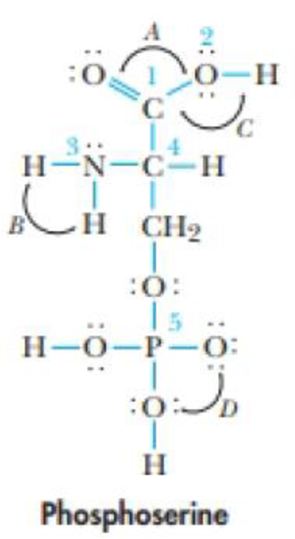 Chapter 9, Problem 39GQ, Phosphoserine is a less-common amino acid. (a) Identify the hybridizations of atoms I through 5. (b)