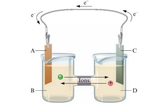 Chapter 18, Problem 9ALQ, Label the following parts of the galvanic cell. anode cathode reducing agent oxidizing agent