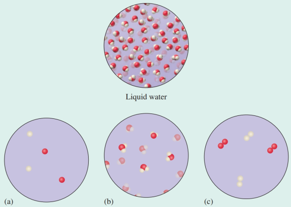 Chapter 12, Problem 2SC, A representation of liquid water is shown below. Which of the three representations that follow best