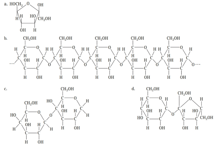 Chapter 16, Problem 53E, Classify each of the following carbohydrates as a monosaccharide, disaccharide, or polysaccharide: