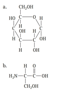 Chapter 16, Problem 55E, Which molecule is an amino acid? , example  1