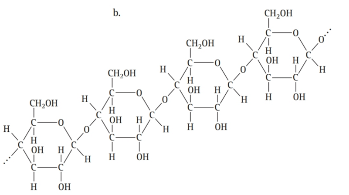 Chapter 16, Problem 58E, Classify each molecule as a lipid, carbohydrate, or amino acid: , example  2
