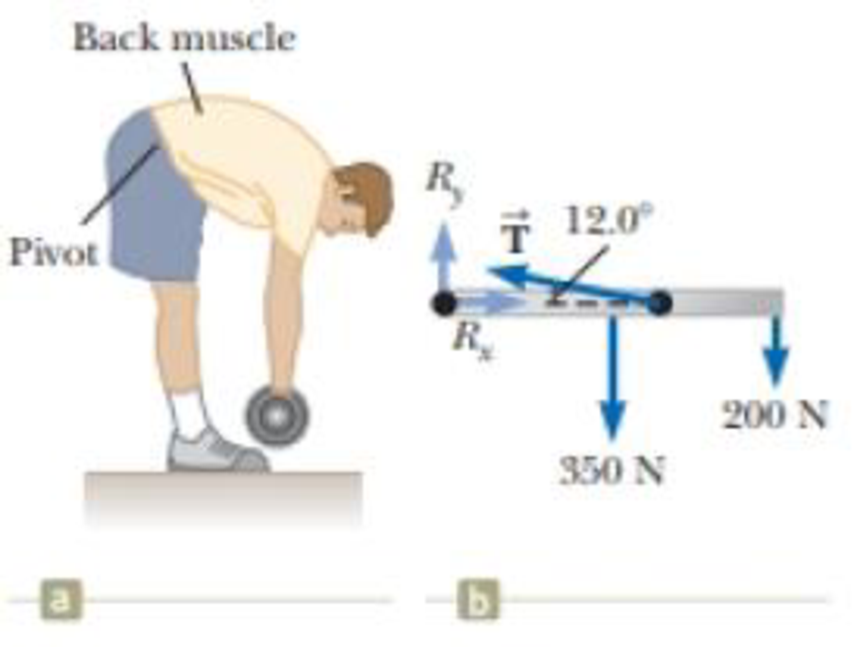 Chapter 12, Problem 34AP, Assume a person bends forward to lift a load with his back as shown in Figure P12.34a. The spine