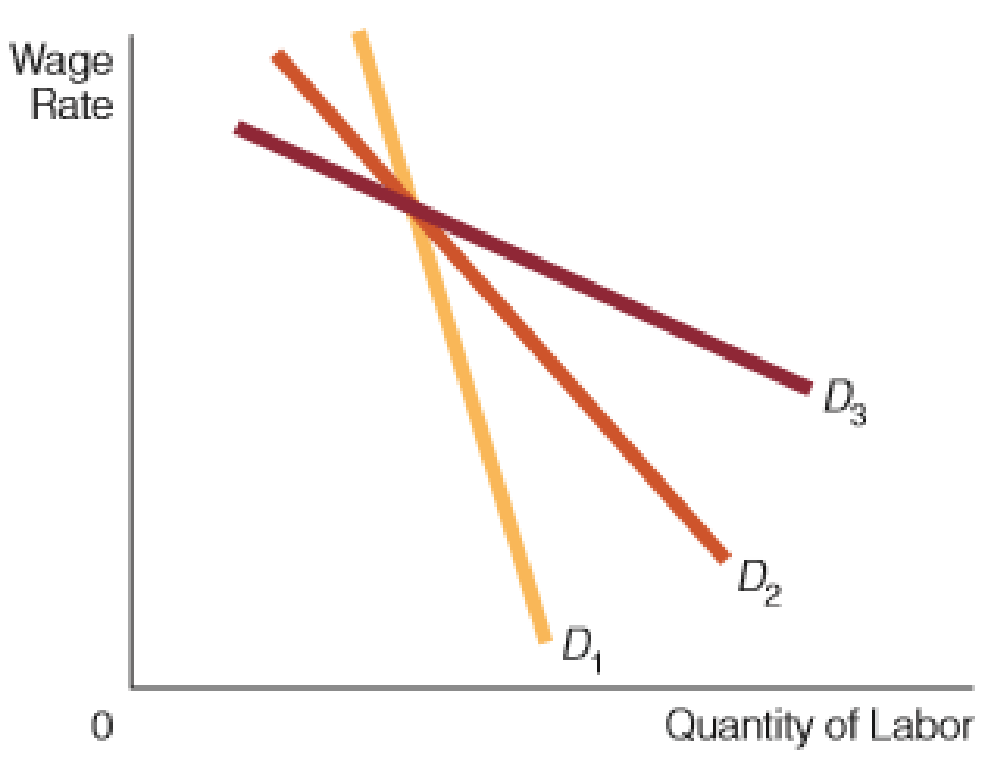 Chapter 27, Problem 2WNG, Which demand curve for labor in the accompanying figure exhibits the most pronounced wage-employment
