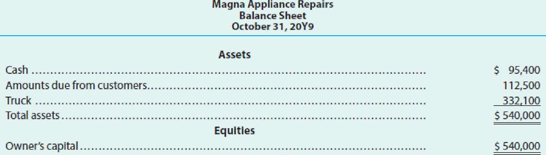 Chapter 3, Problem 5TIF, Adjustments and financial statements Several years ago, your brother opened Magna Appliance Repairs. , example  2