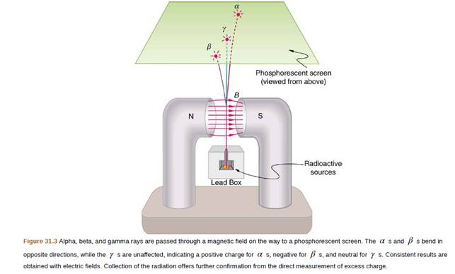 Chapter 31, Problem 6CQ, Consider Figure 31.3. If an electric field is substituted for the magnetic field with positive