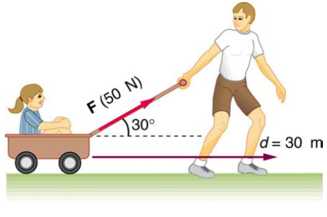 Chapter 7, Problem 6PE, How much work is done by the boy pulling his sister 30.0 m in a wagon as shown in Figure 7.36?